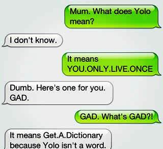What is yolo means
